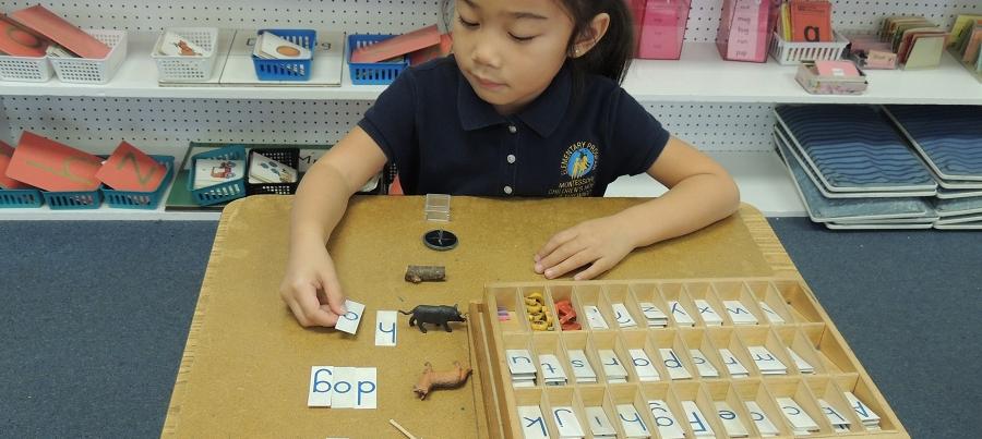 Montessori Childrens House Of Hayward Hayward Preschool Hayward